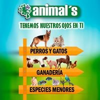 Animal's Ltda.