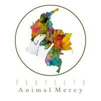 Proyecto Animal Mercy Colombia