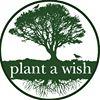 Plant a Wish