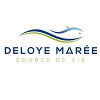 Deloye Marée