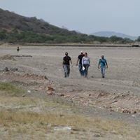 Investigación paleontológica en Jalisco