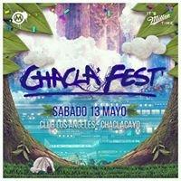 Chacla Fest Colors