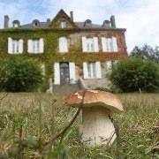 Vacances en Limousin, Haute-Vienne, Creuse et Corrèze