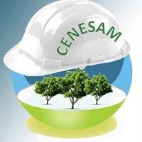 Centro de Especialización Ambiental - Cenesam