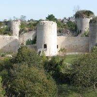 Association des Amis du Château du Coudray-Salbart