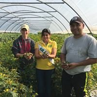 UMass Amherst Urban Agriculture and Nutrition Program
