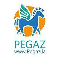 Poradnia Pegaz