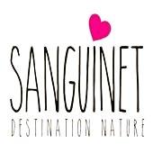Tourisme Sanguinet