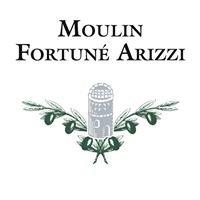 Moulin Fortuné Arizzi, Huile d'Olive Pur Terroir