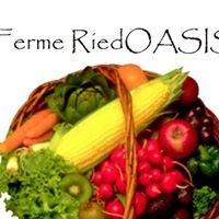 Ferme Riedoasis