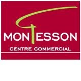 Centre Commercial Montesson