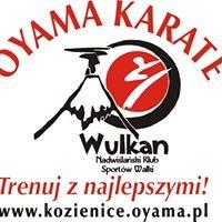 Nadwiślański Klub Sportów Walki WULKAN -  Kozienice