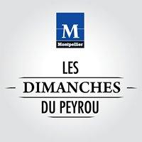 Les Dimanches du Peyrou