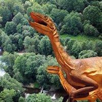 """Stowarzyszenie LGD """"Kraina Dinozaurów"""""""