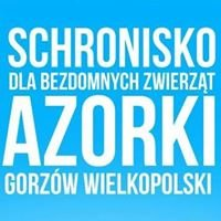 Schronisko Azorki Gorzów Wlkp. - strona wolontariuszy
