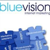 Blue Vision Internet Marketing