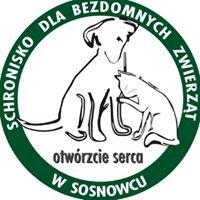 Schronisko dla bezdomnych zwierząt w Sosnowcu