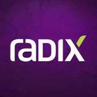 Radix Engenharia e Software