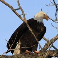 Milford State Park - Kansas Wildlife, Parks & Tourism