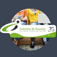 Instituto de Gouveia - Escola Profissional