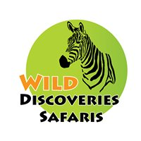 Wild Discoveries Safaris