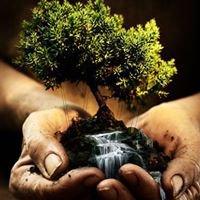 Naturaleza y Salud Fundación Misionera INC
