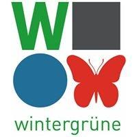 wintergrüne - Evangelisches Jugendbildungsprojekt