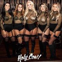 Holy Cow Nightclub