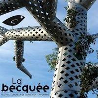 Festival La Becquée