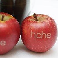 Hamburg Center for Health Economics - HCHE
