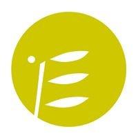 Stiftung für Ehrenamt und bürgerschaftliches Engagement in MV