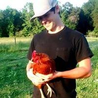 Grateful Pastures Farm