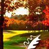 The Rick Smith Golf Academy at The International Resort