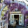 The Drawing Room Boutique, Cafe & Art Gallery
