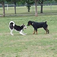 Fort Woof Dog Park
