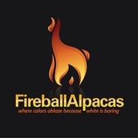 Fireball Alpacas