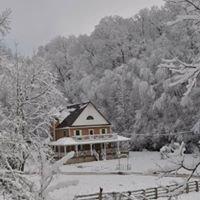 Cabin Creek Farm and Beyond