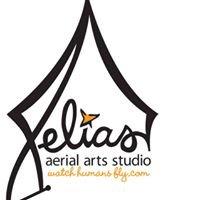 Xelias Aerial Arts