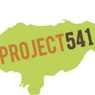 Project 541