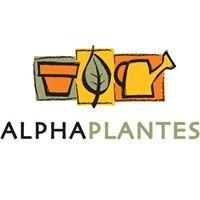 Alphaplantes