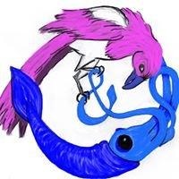 Magpie & Squid