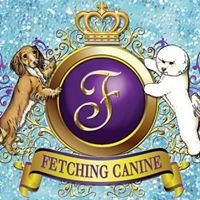 Fetching Canine Grooming and Boutique
