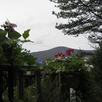 Mt Greylock Greenhouses