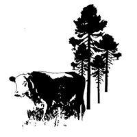 Pine Woods Farm
