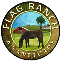 Flag Ranch: Home of The Flag Foundation for Horse/Human Partnership