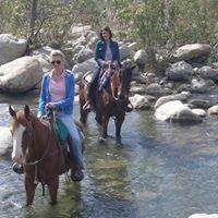 Ojai Valley Trail Riding Company