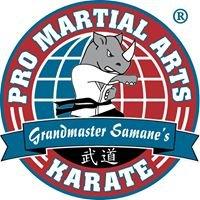 PRO Martial Arts Village on the Creeks