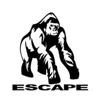 Escape Rock Climbing Holds
