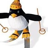 Flying Penguin Outdoor Sports