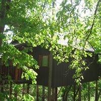 Eureka Springs Treehouses